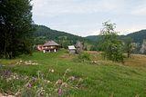 Bihor-Gebirge